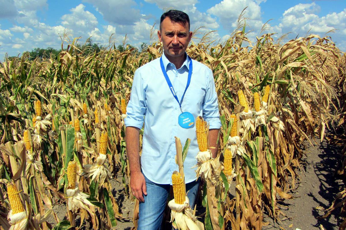 Zoran Petrović (59163)