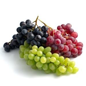 Stolne sorte vinove loze