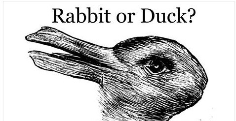 upload/slike/zid/rabbit-or-duck.jpg