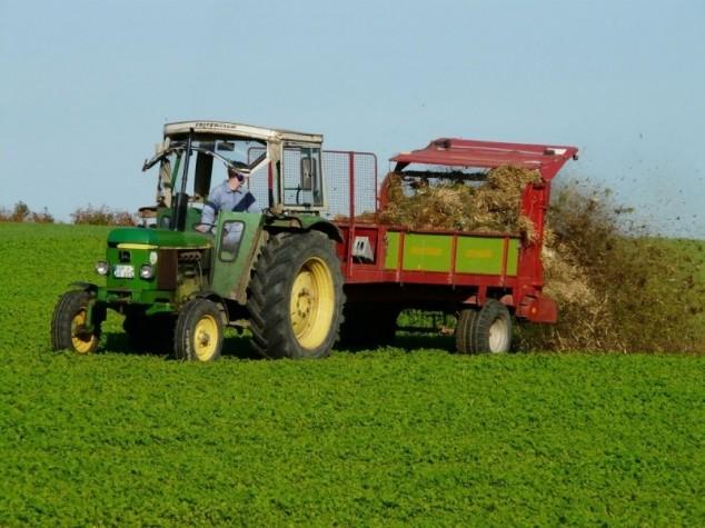 Važnost gnojidbe djetelina i trava