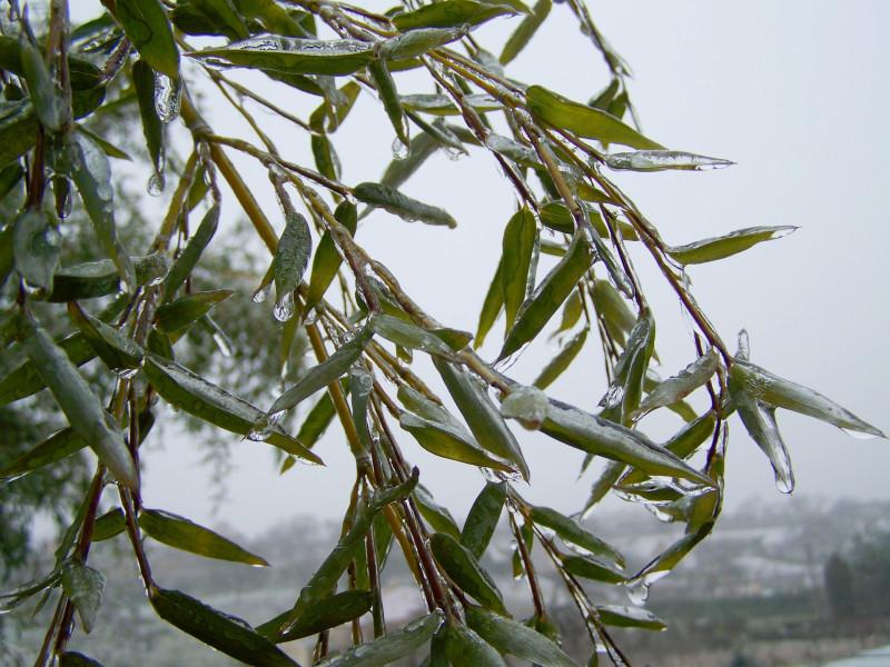 Kiša, mraz, susnježica pa i snijeg