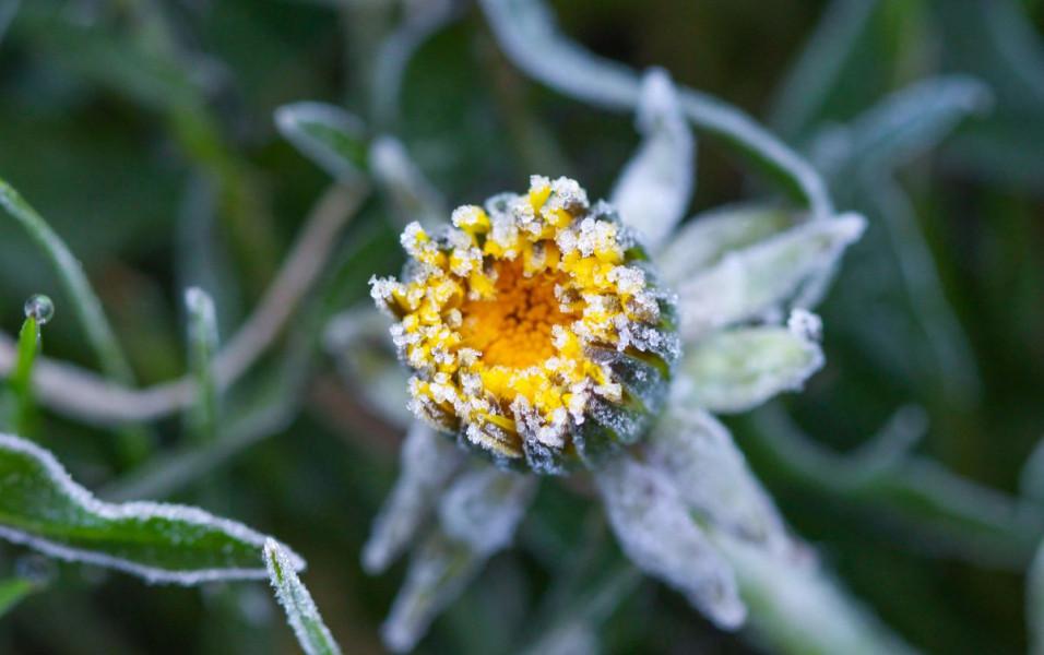 Vrijeme stabilnije, mraz i dalje prijeti