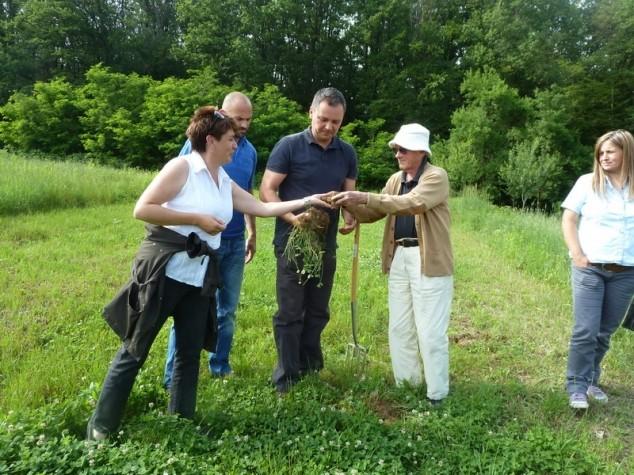Šest hektara pod biodinamički uzgojenim povrćem!