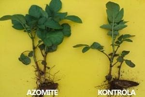 Azomite - prirodan izvor minerala i elemenata u tragovima