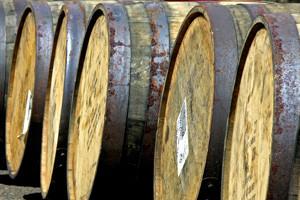 Borci za promociju hrvatskih vina do posljednje kapljice