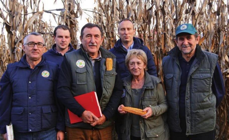 Bc predstavio novi katalog hibrida kukuruza