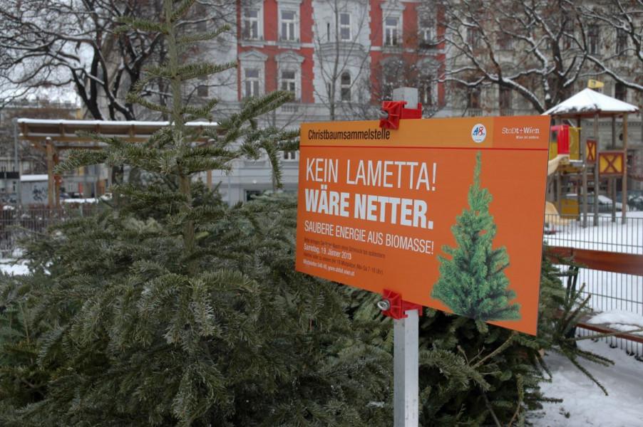 Od prikupljenih božićnih drvaca proizveli 1.700 MWh energije