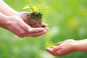 Biodinamička poljoprivreda - razmjena energija