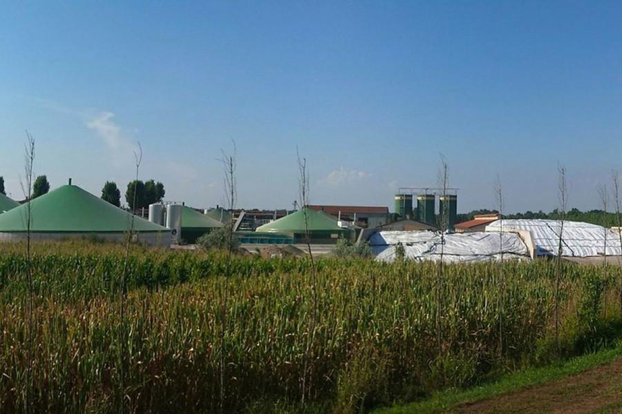 Uskoro grejanje na biomasu!
