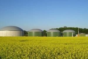 Proizvodnja bioplina i skromni rezultati u RH