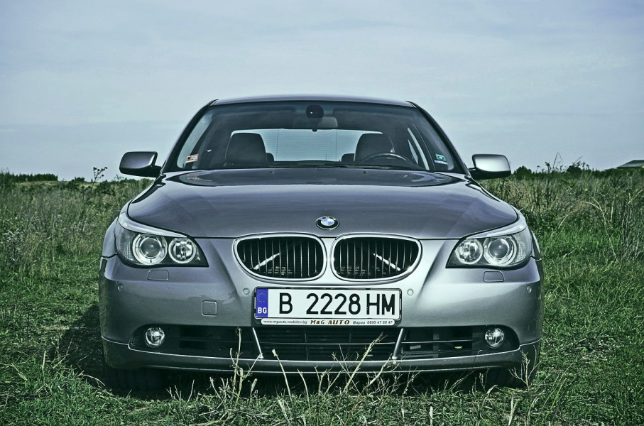 Oko BMW-a na svom polju posadit će kupine