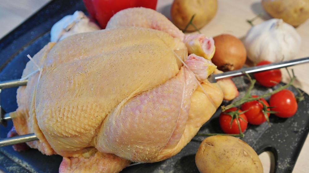 Salmonela u pilećim prsima iz domaćeg uzgoja