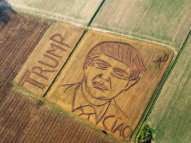 Polje pretvorio u portret Donalda Trampa!