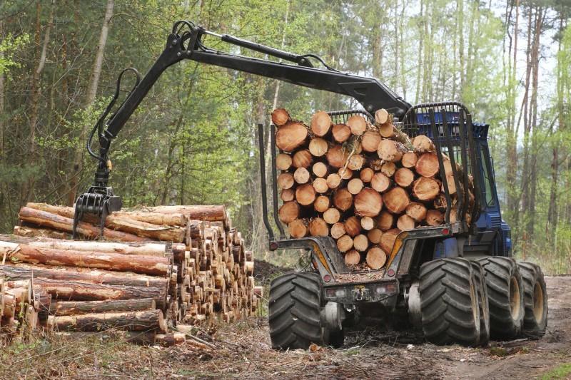 U potrazi za pravednijom raspodjelom drvne sirovine