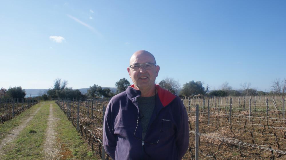 Vuina: Ne mogu nas zaustaviti jeftina uvozna vina