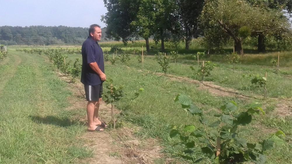 Od iznajmljenih oranica do ekološke proizvodnje oraha
