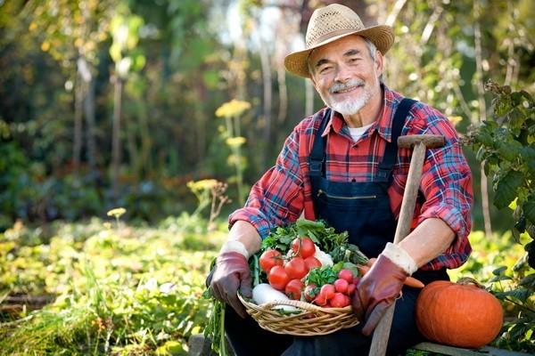 (R)Evolucija ekološke poljoprivrede u EU