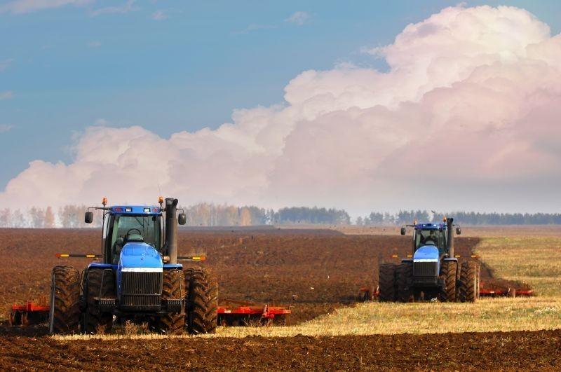 Ekološka proizvodnja pšenice