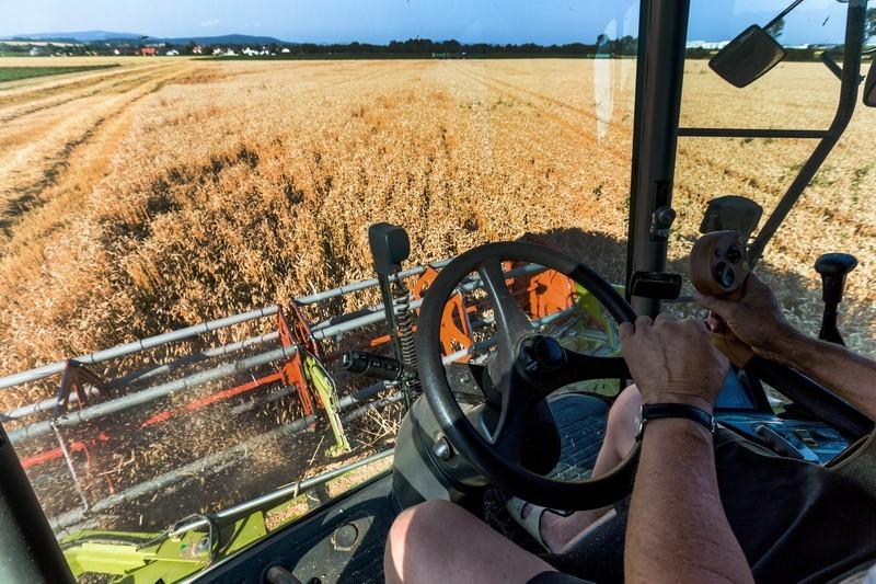 Visoki prinosi u proizvodnji eko žitarica