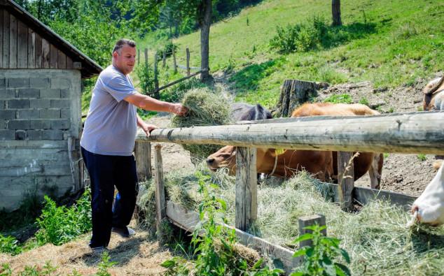 Pravila ekološkog uzgoja stoke
