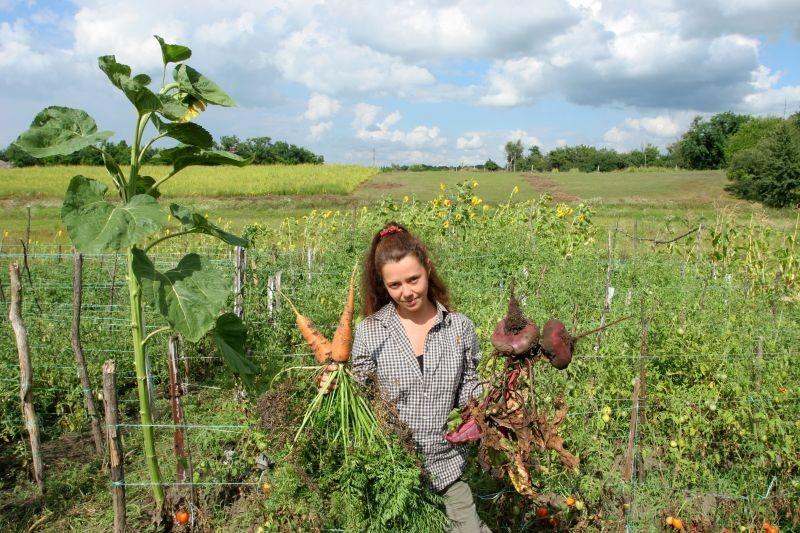 Uzgoj povrća - najveća prilika za eko proizvodnju