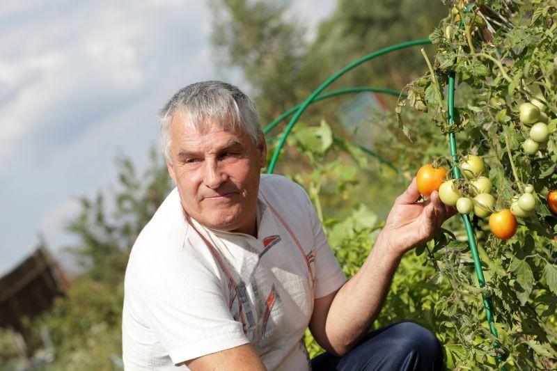 Potencijali eko poljoprivrede u Hrvatskoj