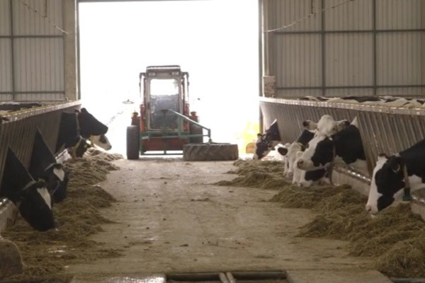 Farma iz Čantavira jedna od tri najbolje u Srbiji