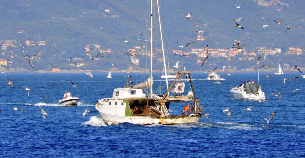 Potpore za udružene ribare!