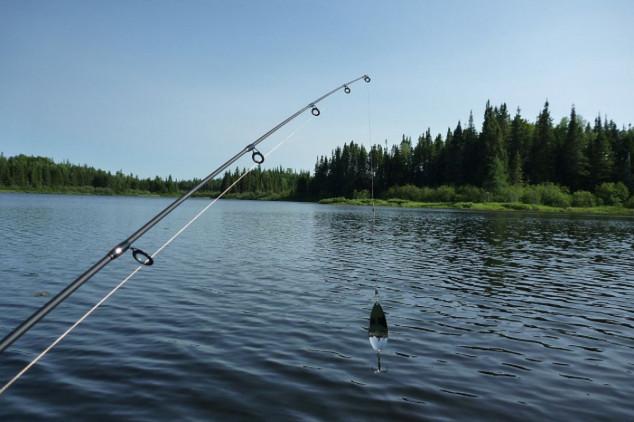 Ariljčanin od sportskog ribolova napravio biznis