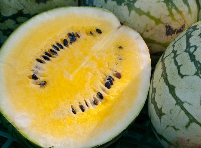OPG Karas carstvo ovaca, batata i žutih lubenica