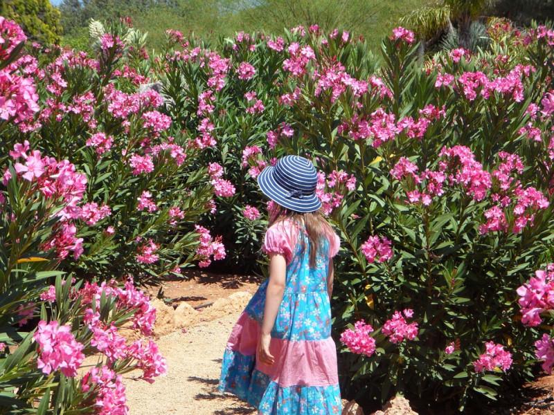 Zaštitite djecu od otrovnih i opasnih biljaka