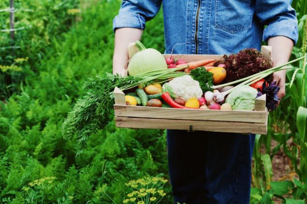 10 država EU i Švicarska imaju oznaku GMO-free