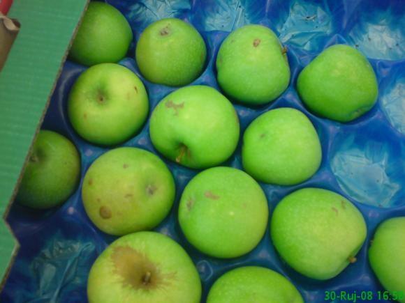 Prodaja jabuka na veliko i malo