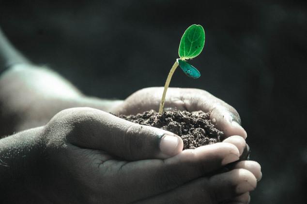 Banka gena - garant očuvanja resursa hrane