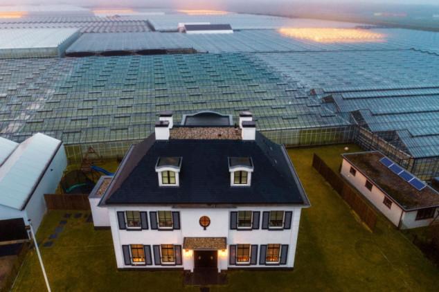 Mala Holandija velika poljoprivredna sila