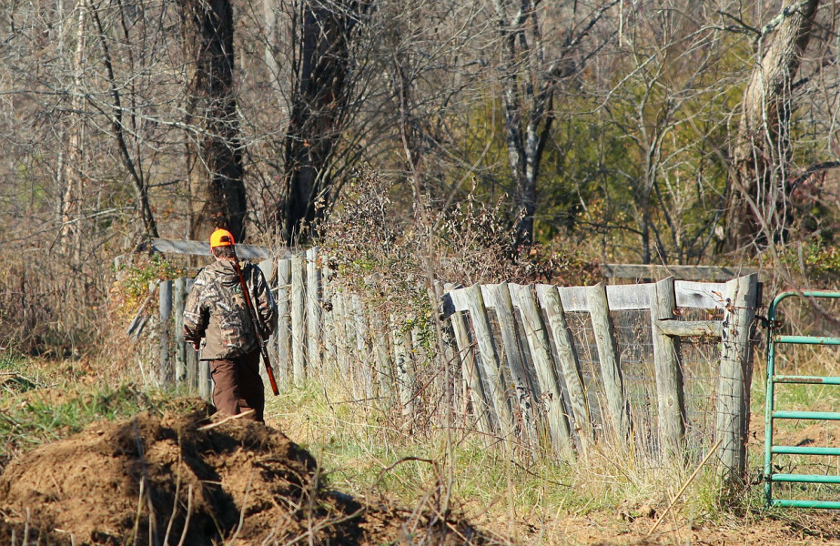 Javnost savjetuje o Pravilniku za lovostaj