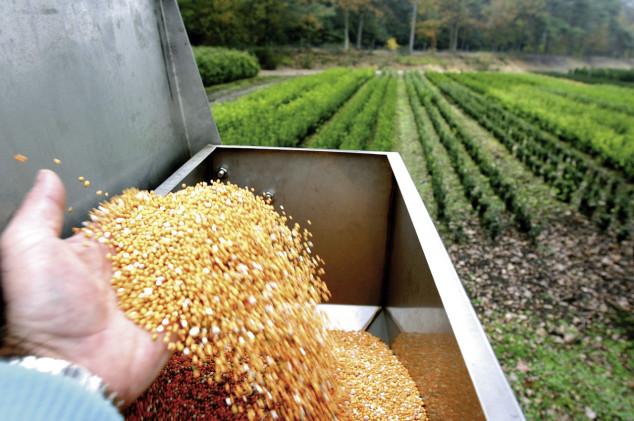 Prednosti kontrolirano otpuštajućih gnojiva