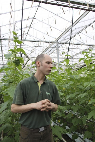 Jonkers - majstor eko proizvodnje povrća