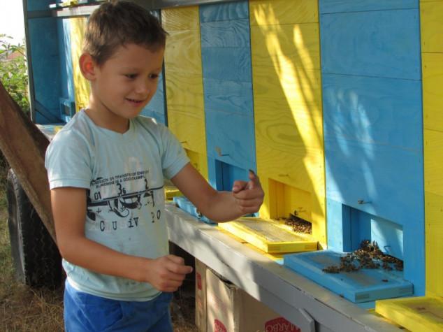 Neven i Damjan najmlađi pčelari u Europi
