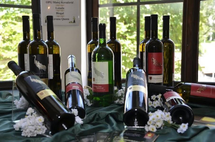 Vinodar 2016. - najzabavniji festival vina
