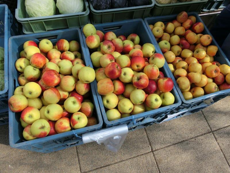 Prve kruške i jabuke izvezene za Rusiju