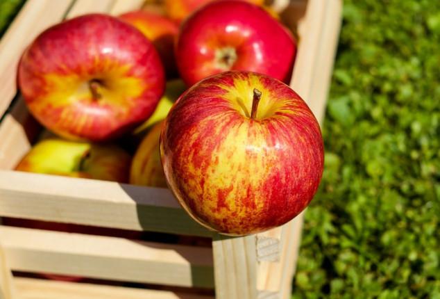 Znate li kako najbolje čuvati jabuke?