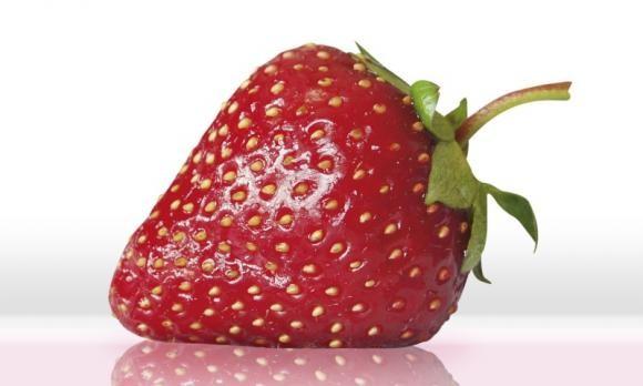 Zaštita jagoda od štetnih bolesti