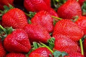 Virovitička županija podijelila 36.000 sadnica jagoda