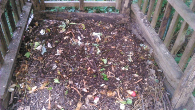 Kako proizvesti kompost, prirodnu hranu za biljke?