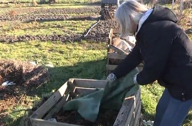 Kako napraviti kompost?