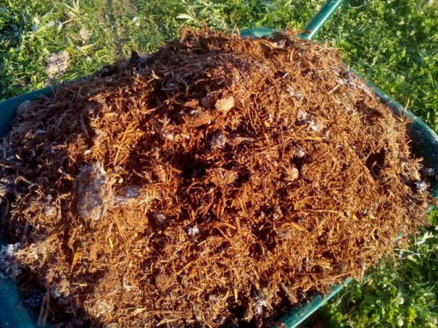 Pognojite zemlju kompostom od gljiva