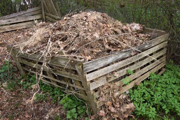 Kako i zašto kompostirati opalo lišće?