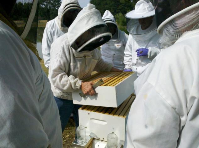 Kongres u Gradačcu okuplja pčelare iz regije