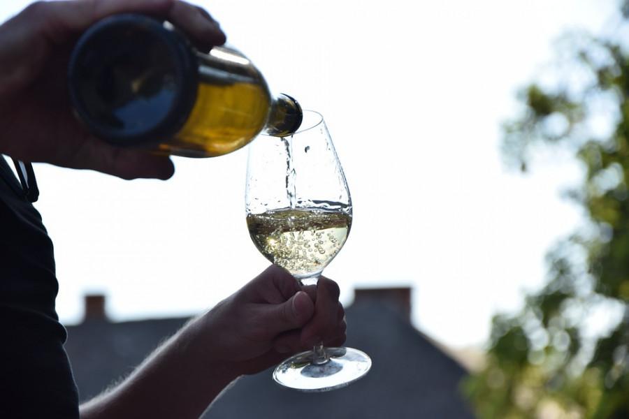 Vinarija koju čuva sv. Elizabeta i u kojoj se proizvodi vino njoj u čast